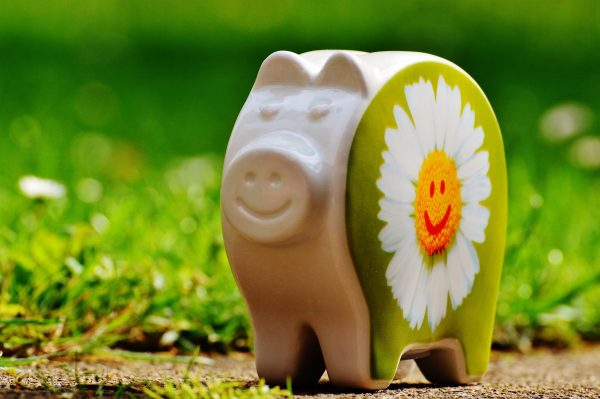 Happy piggy bank on grass