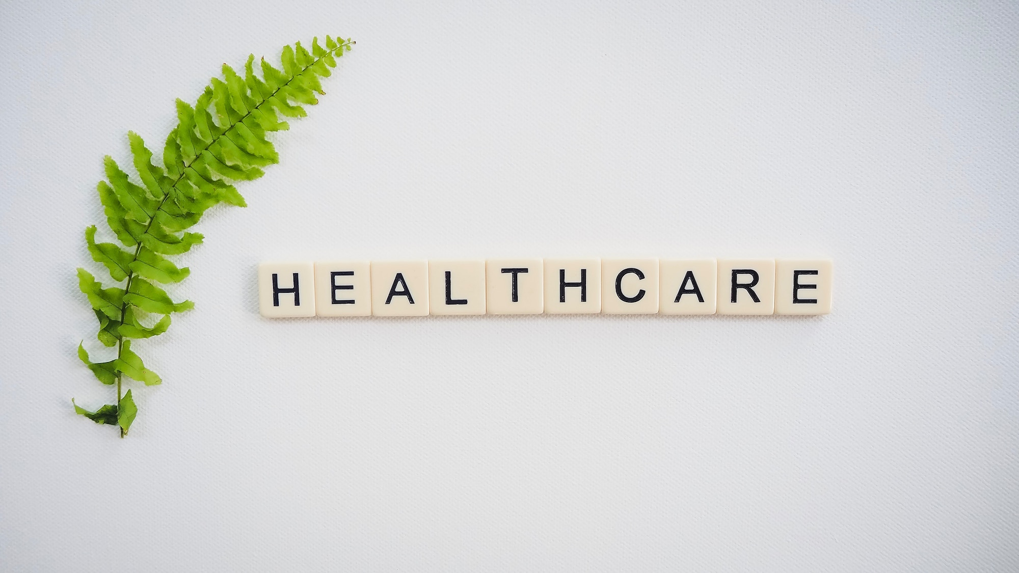Scrabble letters spell out the word 'healthcare' in a neat row with a fern placed of the left-hand side of the word
